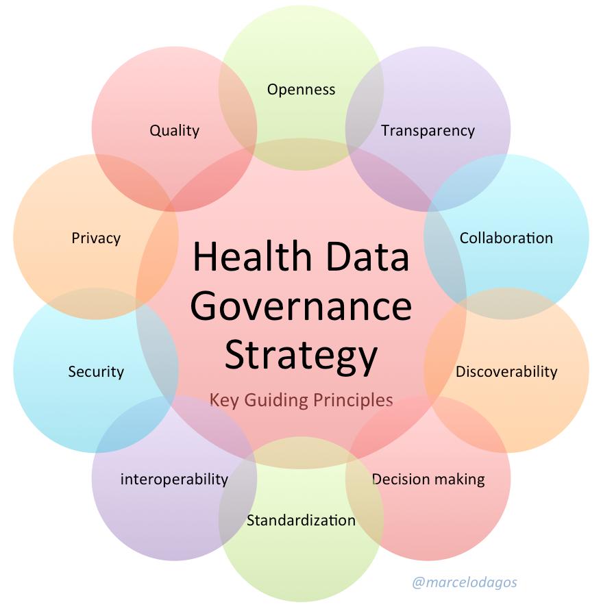 Health Data Governance Strategy - Guiding principles