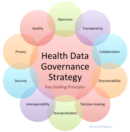 Health Data Governance Strategy - Guiding principles